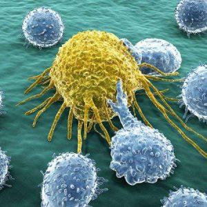 结直肠癌选TAS-102还是瑞戈非尼?